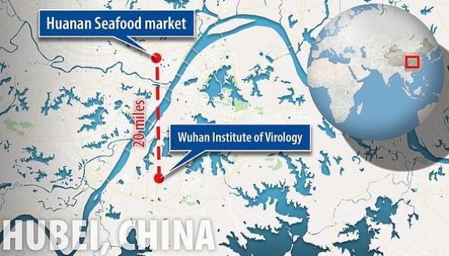 Il laboratorio più alto della Cina per lo studio dei virus si trova a Wuhan, la stessa città al centro dell'attuale focolaio di coronavirus